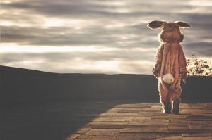 rabbit costume. ryanmcguire. free pixabay