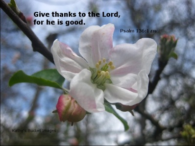 Give thanks meme ps136