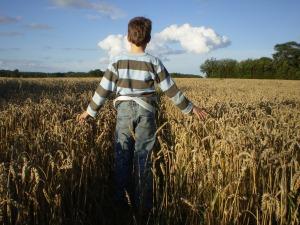 boy-in-field-rasterlocke-free-pixabay
